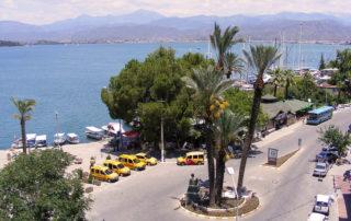 Fethiye harbour paspatur palm center